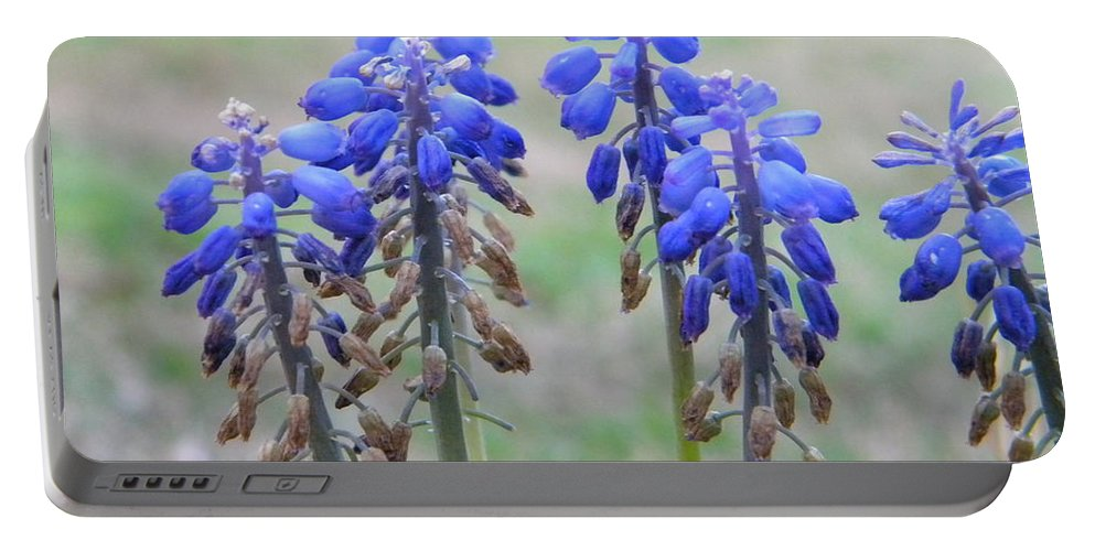 Blue Portable Battery Charger featuring the photograph Blue Bells 2 by Nathanael Smith