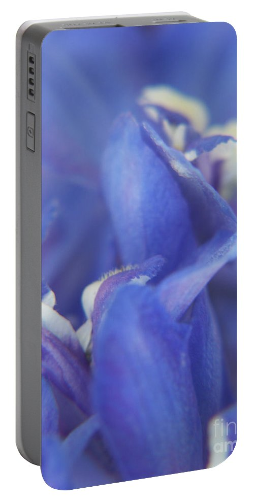 Flowers Portable Battery Charger featuring the photograph Blue Delight by Jackie Farnsworth