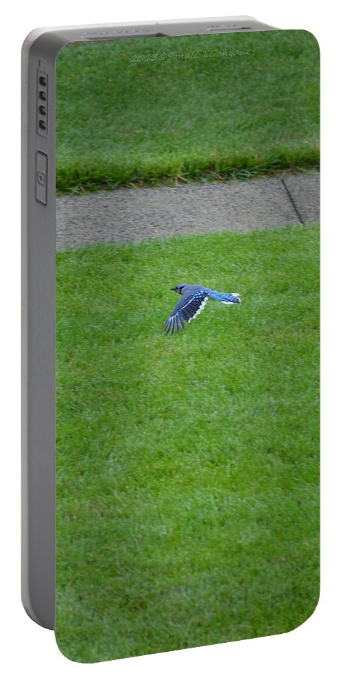 Jaybird Portable Battery Charger featuring the photograph Blue Flight by Sonali Gangane