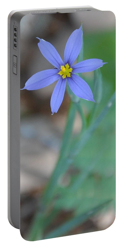 Blue Portable Battery Charger featuring the photograph Blue Flower by Frank Madia