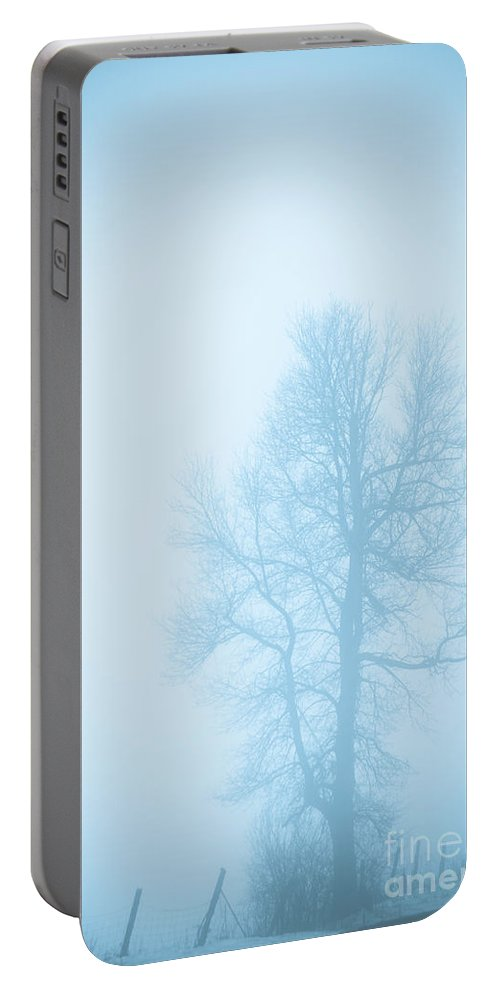 Landscapes Portable Battery Charger featuring the photograph Blue Fog by Cheryl Baxter