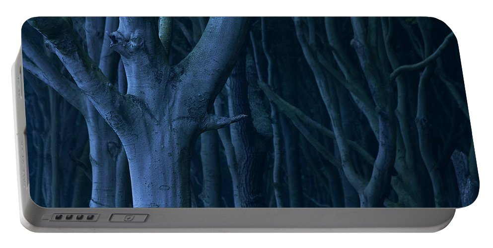Nature Portable Battery Charger featuring the photograph Blue Forest by Heiko Koehrer-Wagner