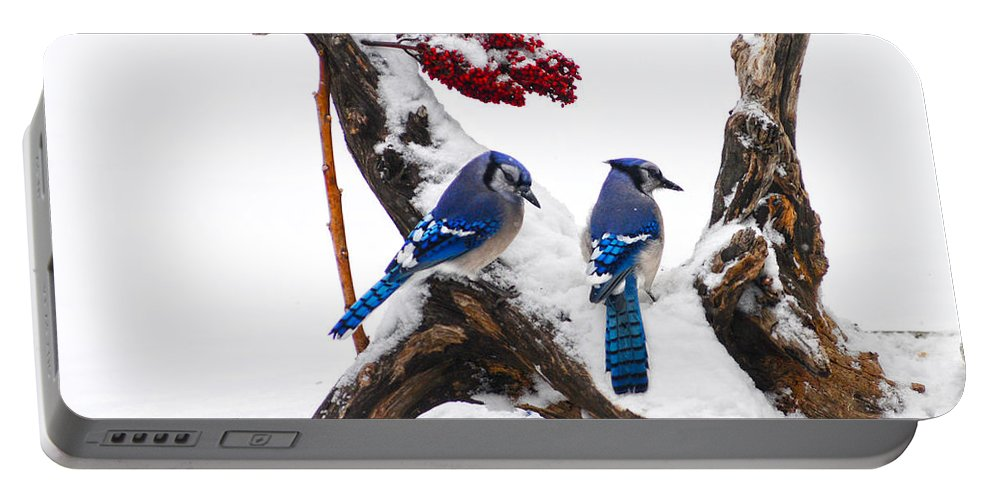 Blue Jays In Winter Portable Battery Charger featuring the photograph Blue Jays In Winter by Randall Branham
