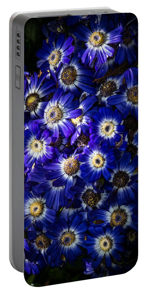 Poem Blue Portable Battery Charger featuring the photograph Blue Poem by Edgar Laureano