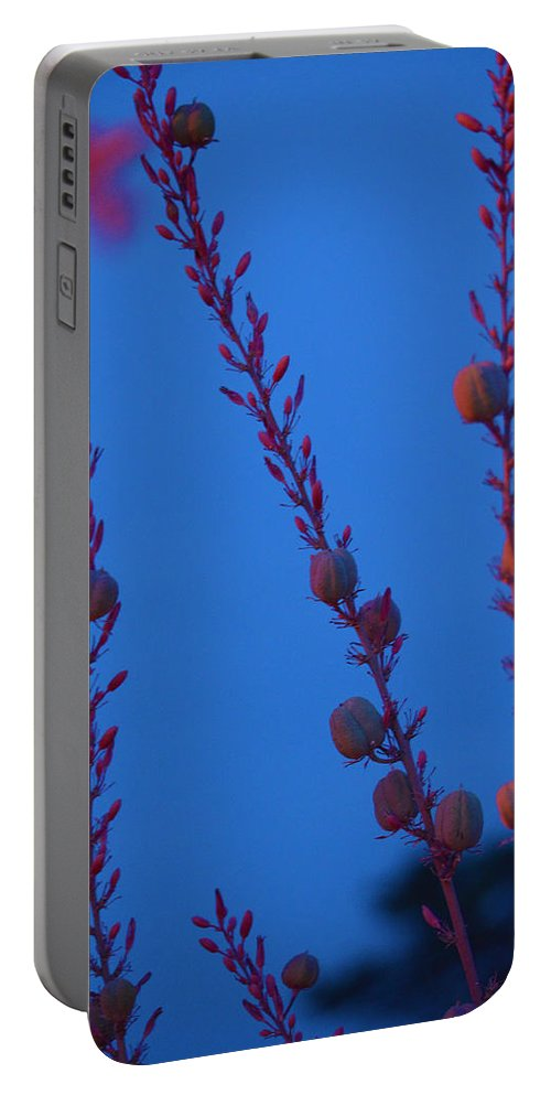 Blue Portable Battery Charger featuring the photograph Blue Sky Flowers At Night by Deprise Brescia