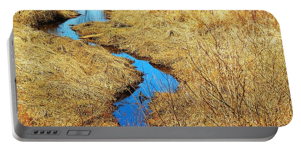 Stream Portable Battery Charger featuring the photograph Blue Stream by MTBobbins Photography