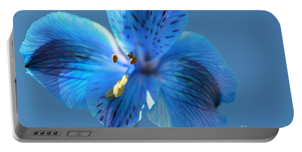 Blue Flower Portable Battery Charger featuring the photograph Blue Summer by Krissy Katsimbras