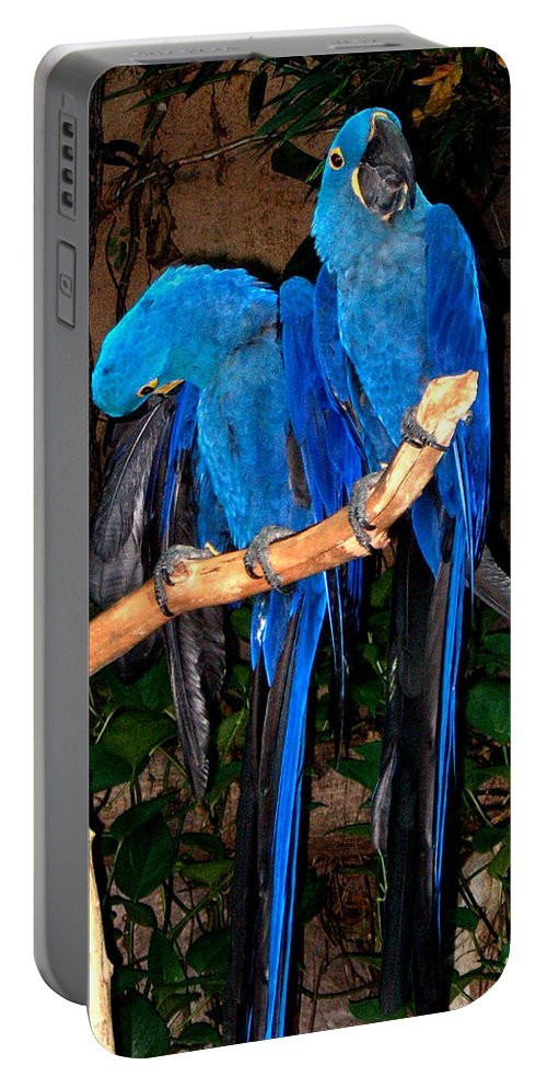Blue Portable Battery Charger featuring the photograph Blue Velvet by Bertie Edwards