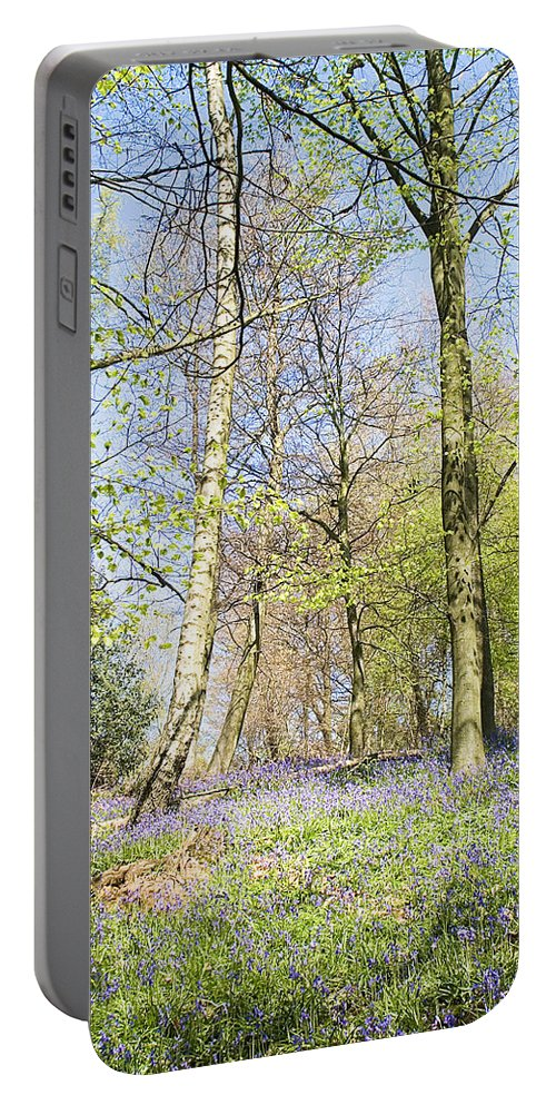 Bluebells Portable Battery Charger featuring the photograph Bluebell Time In England by Peter Lloyd