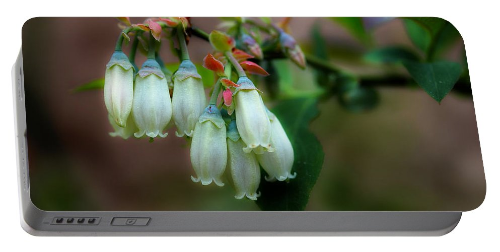 Blueberries Portable Battery Charger featuring the photograph Blueberries In The Morning by Michael Eingle