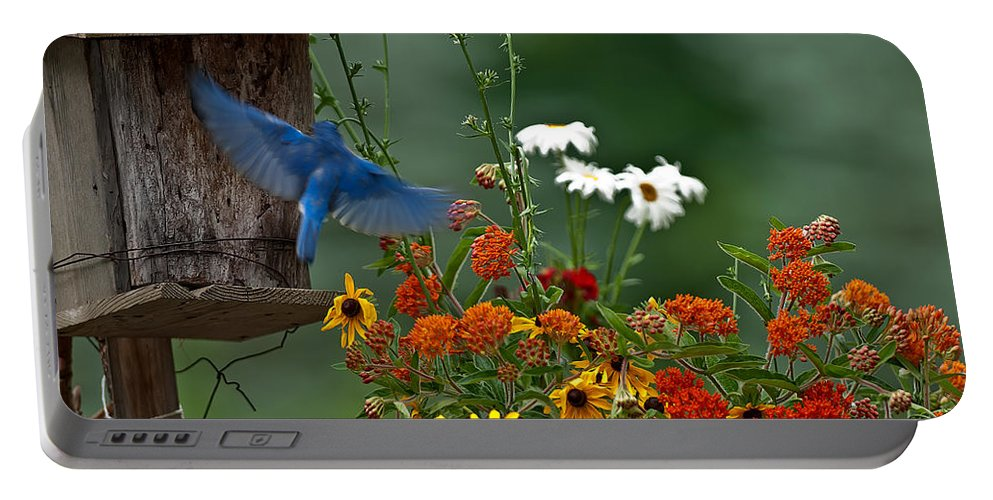 Bluebird Portable Battery Charger featuring the photograph Bluebird And Colorful Flowers by Randall Branham