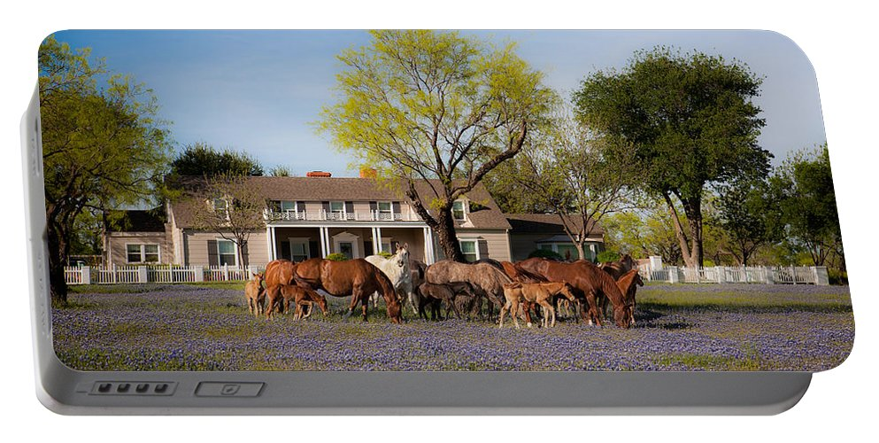 Horse Portable Battery Charger featuring the photograph Bluebonnet Heaven by Kelli Brown