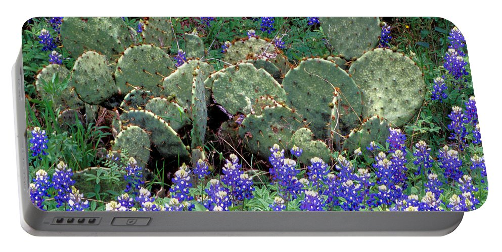 Texas Wildflowers Portable Battery Charger featuring the photograph Bluebonnets And Cacti by Jim Smith