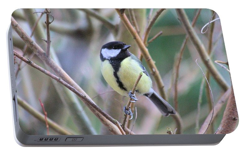 Bluetit Portable Battery Charger featuring the photograph Bluetit by Gordon Auld