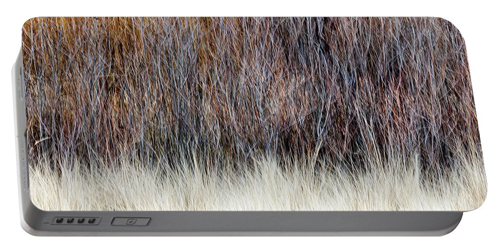 Trees Portable Battery Charger featuring the photograph Blurred Brown Winter Woodland Background by Elena Elisseeva