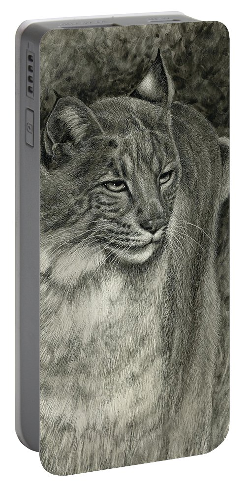 Bobcat Portable Battery Charger featuring the drawing Bobcat Emerging by Sandra LaFaut