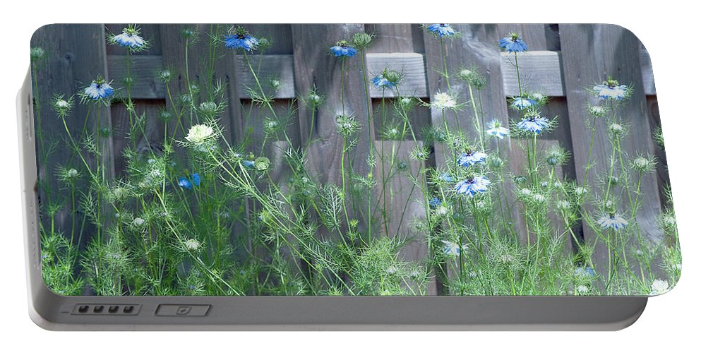 Nigella Portable Battery Charger featuring the photograph Bordering Nigella by Gwyn Newcombe