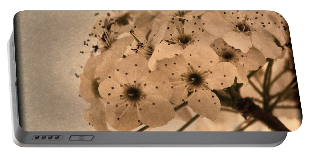 Bradford Pear Portable Battery Charger featuring the photograph Bradford Pear Bloom Art 1 by Lesa Fine
