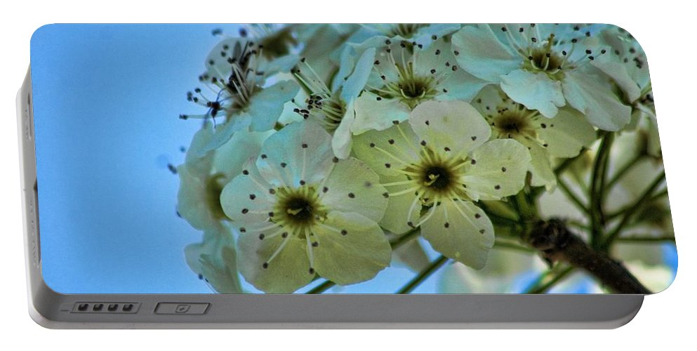 Bradford Portable Battery Charger featuring the photograph Bradford Pear I by Lesa Fine
