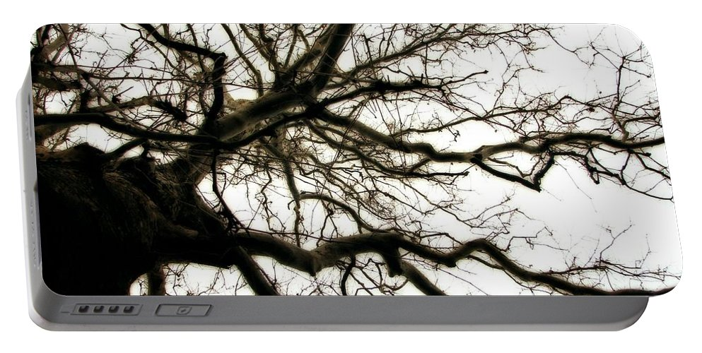 Branches Portable Battery Charger featuring the photograph Branches by Michelle Calkins