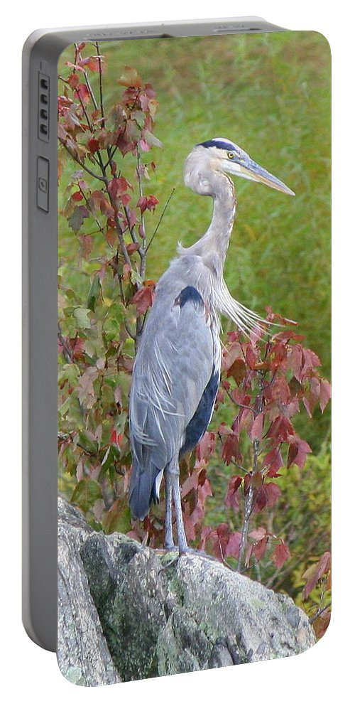 Great Blue Heron Portable Battery Charger featuring the photograph Breast Wind by Neal Eslinger
