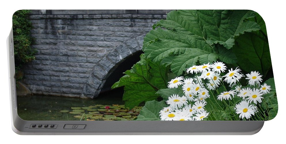 Bridge Portable Battery Charger featuring the photograph Stone Bridge Daisies by Ian Mcadie