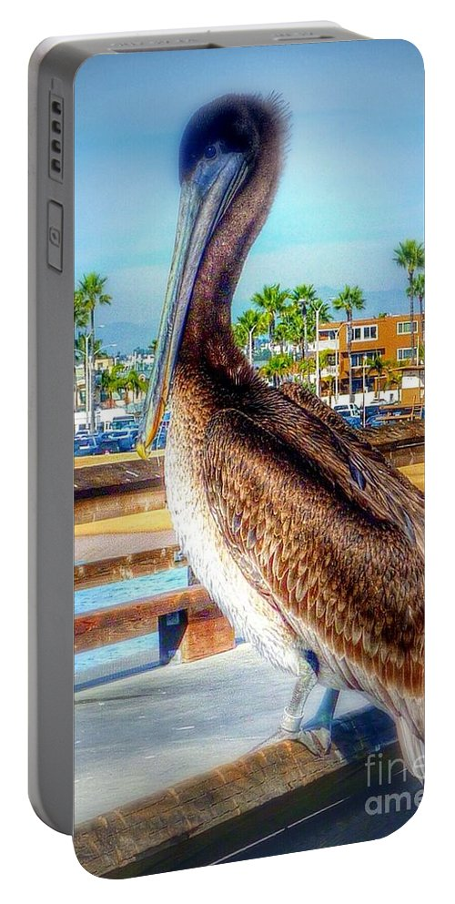 California Coastal Brown Pelican Portable Battery Charger featuring the photograph Brief Pelican Encounter by Susan Garren