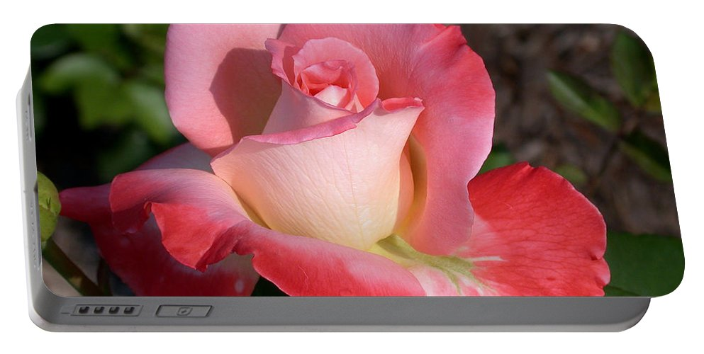 Brigadoon Rose Portable Battery Charger featuring the photograph Brigadoon Rose by Living Color Photography Lorraine Lynch