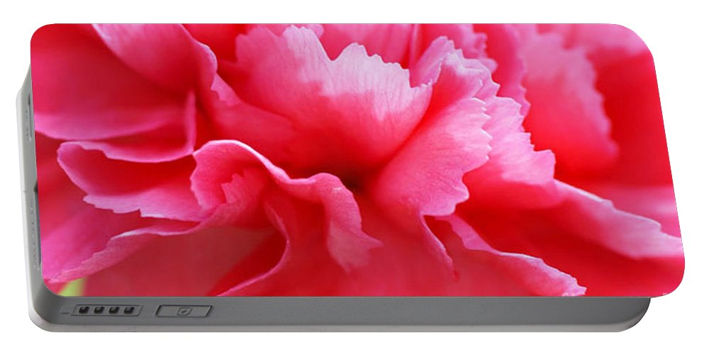 Carnation Portable Battery Charger featuring the photograph Bright Carnation by Carol Lynch