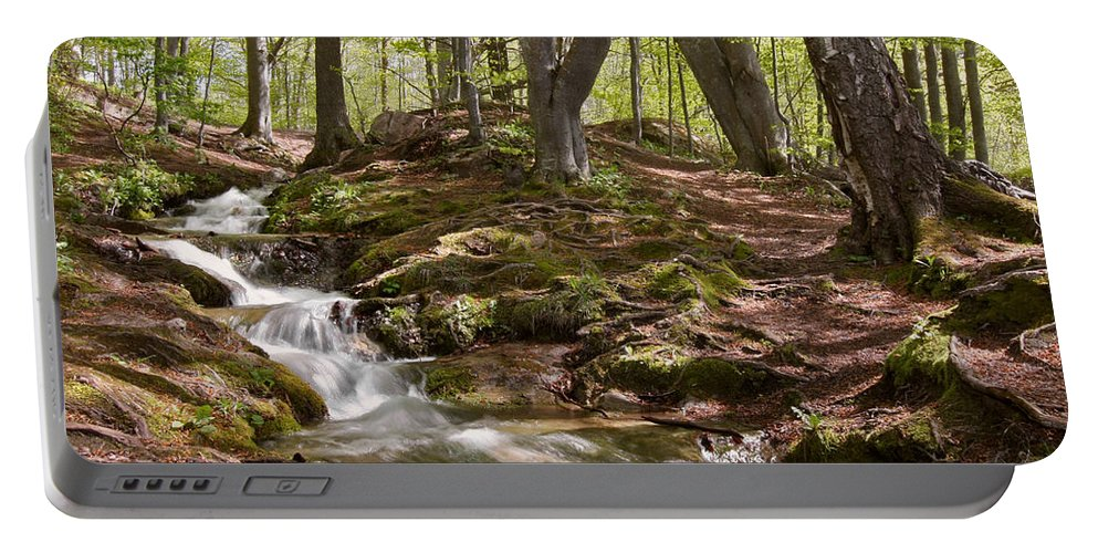 Wood Portable Battery Charger featuring the photograph Bright Forest Creek by Dreamland Media