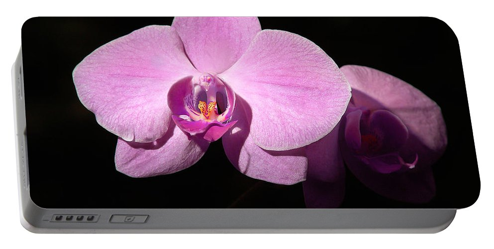 Penny Lisowski Portable Battery Charger featuring the photograph Bright Orchid by Penny Lisowski