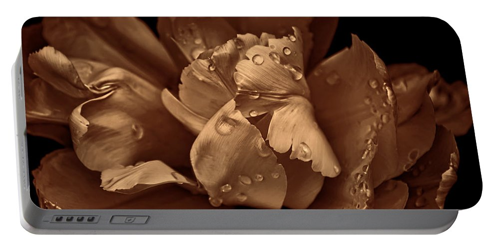 Tulip Portable Battery Charger featuring the photograph Bronze Ruffled Parrot Tulip Flower by Jennie Marie Schell