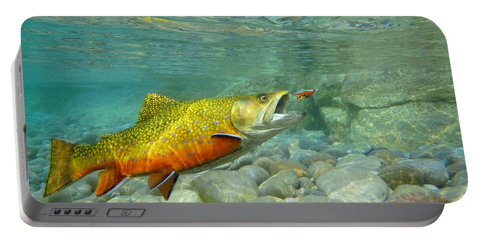 Brook Trout Art Portable Battery Charger featuring the painting Brookie With Wet Fly by Paul Buggia