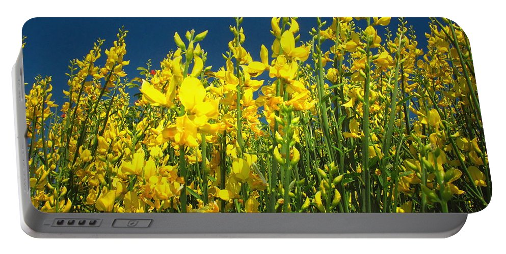 Floral Portable Battery Charger featuring the photograph Broom And Carpenter Bee by Joyce Dickens