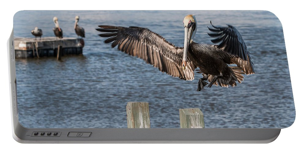 Pelican Portable Battery Charger featuring the photograph Brown Pelican Touchdown by Patti Deters