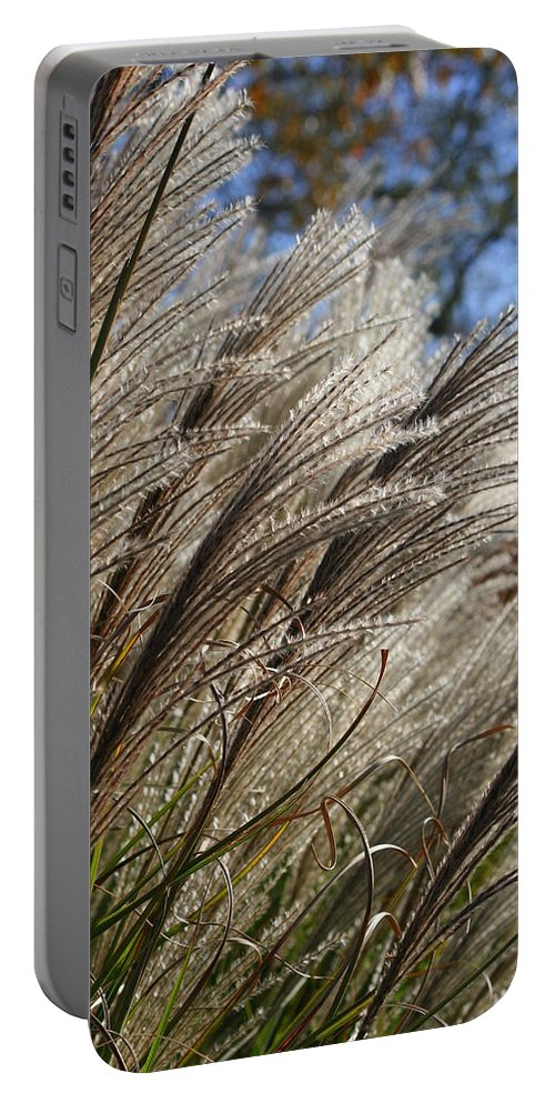 Flower Photography Portable Battery Charger featuring the photograph Brushes Of Autumn by Neal Eslinger
