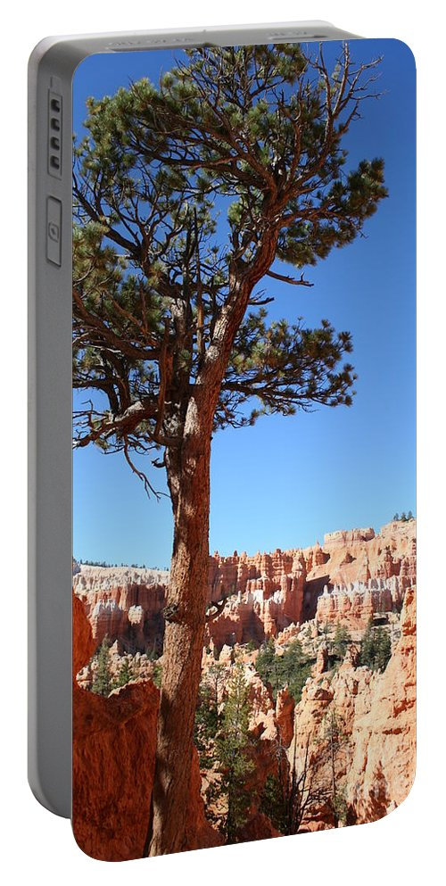 Canyon Portable Battery Charger featuring the photograph Bryce Canyon Pine by Christiane Schulze Art And Photography