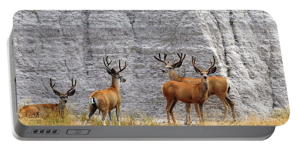 Wildlife Portable Battery Charger featuring the photograph Bucks Abound by Deanna Cagle