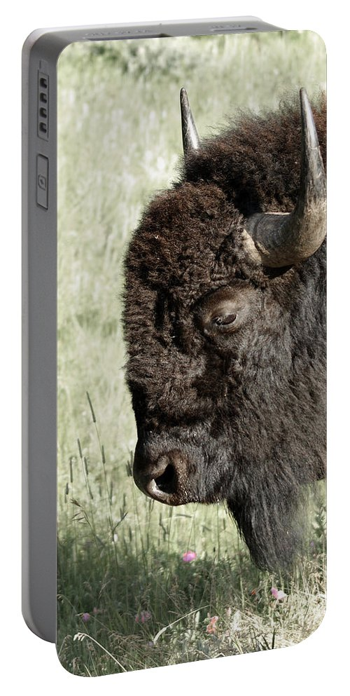 Buffalo Portable Battery Charger featuring the photograph Buffalo by Ernie Echols