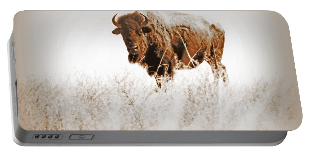 Buffalo Portable Battery Charger featuring the photograph Buffalo Sighting by Lynn Sprowl