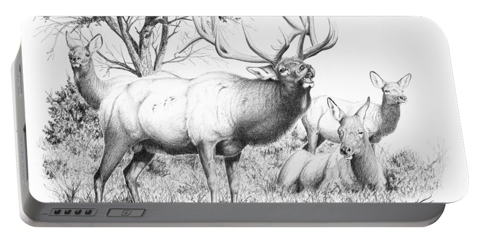 Bull Portable Battery Charger featuring the painting Bull And Harem by Darcy Tate