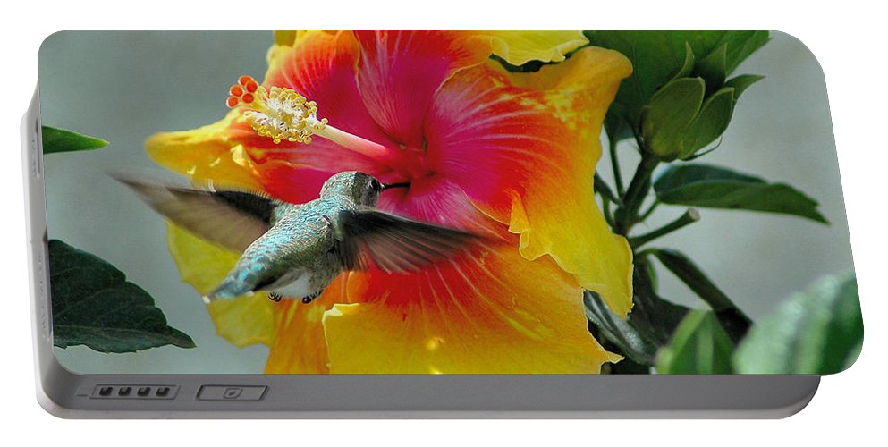 Hummer Portable Battery Charger featuring the photograph Bullseye by Lynn Bauer