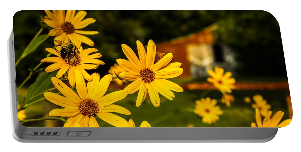 Barn Portable Battery Charger featuring the photograph Bumble Bee On A Western Sunflower by Ron Pate