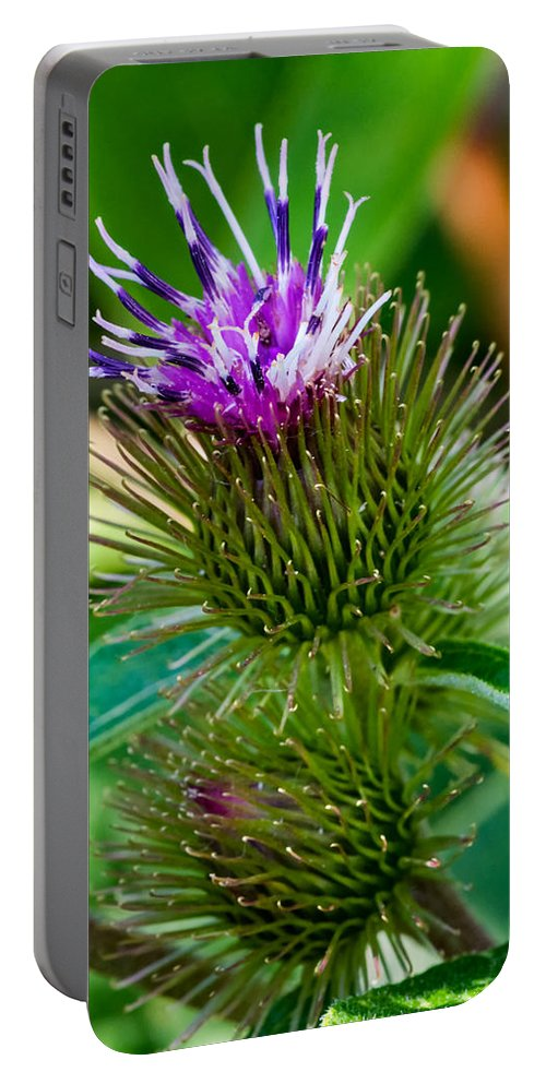 Burdock Portable Battery Charger featuring the photograph Burdock by Steve Harrington