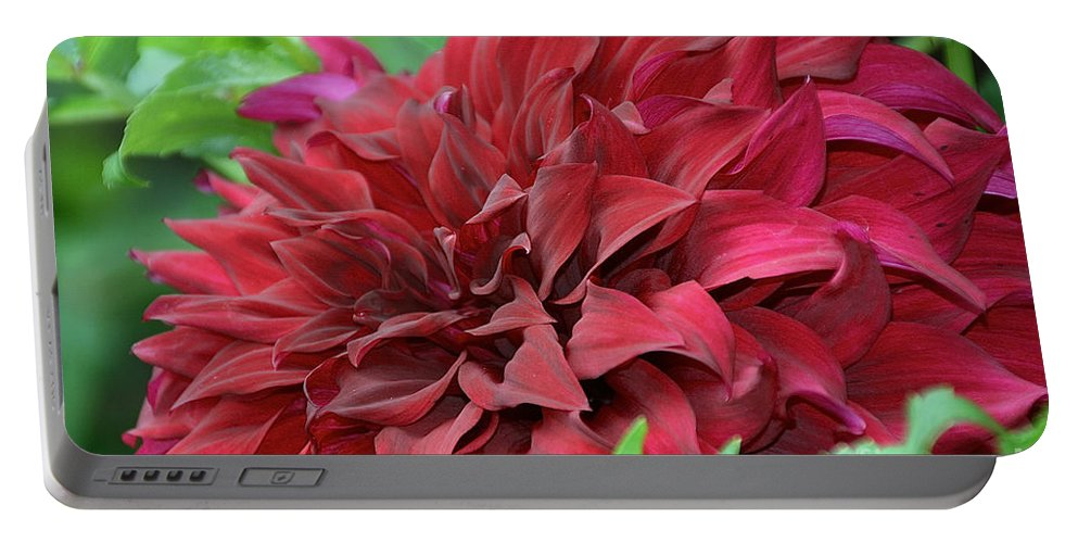 Flower Portable Battery Charger featuring the photograph Burgundy Dahlia by Susan Herber