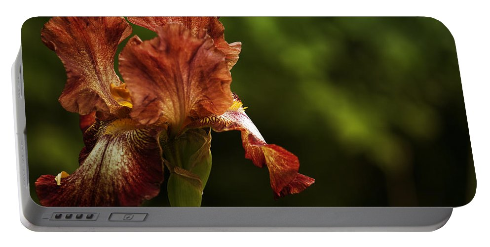 Iris Portable Battery Charger featuring the photograph Burnt Orange Iris by Belinda Greb