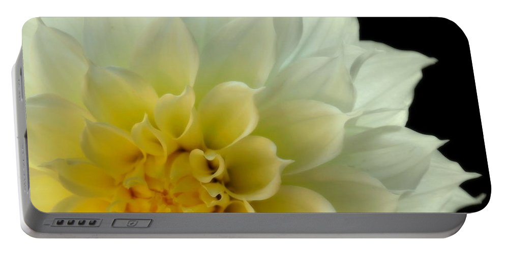 Dahlias Portable Battery Charger featuring the photograph Burst Of Life by Karen Wiles