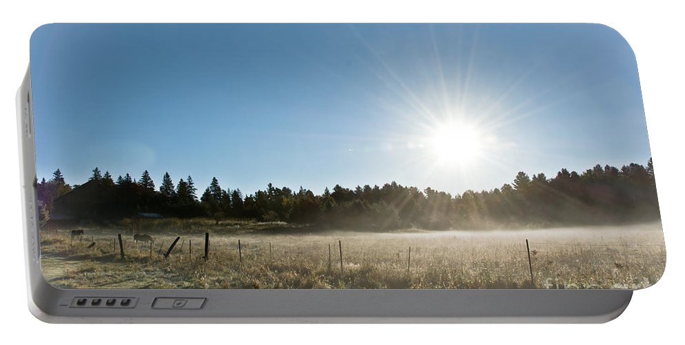 Portable Battery Charger featuring the photograph Burst Of Sunshine by Cheryl Baxter