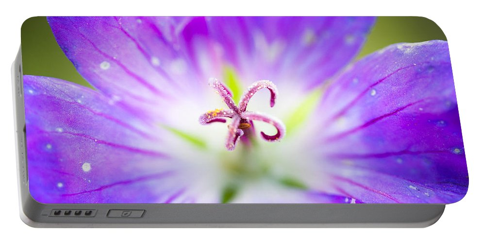 Flower Portable Battery Charger featuring the photograph Burst by Shane Holsclaw