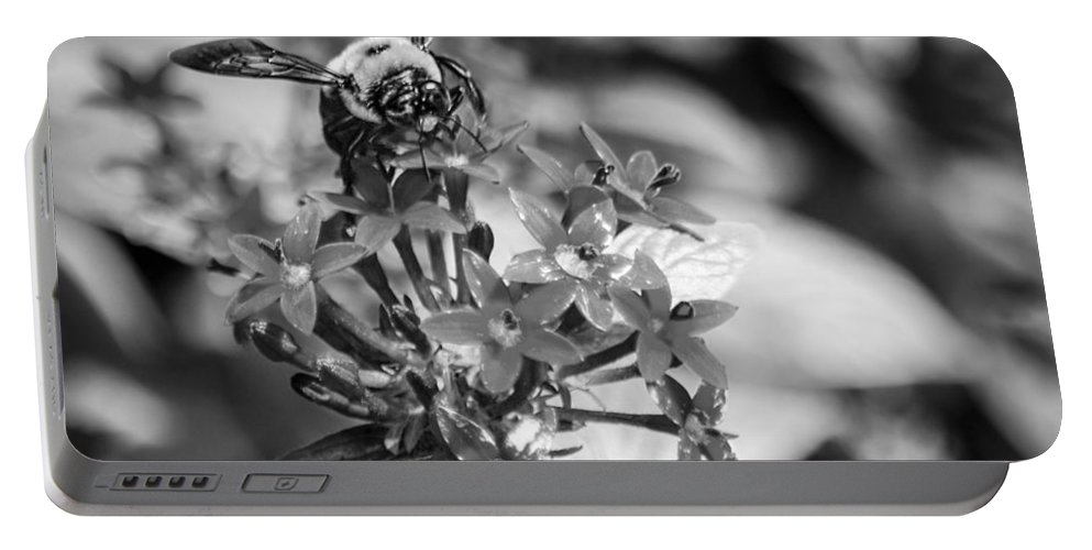 Bee Portable Battery Charger featuring the photograph Busy Bee - Bw by Carolyn Marshall